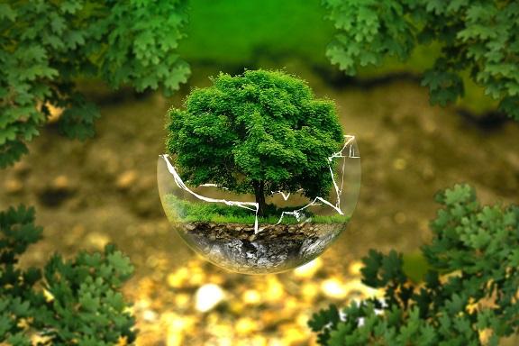Il faut prendre soin de notre planéte, et j'en fais une de mes priorités en rédacton web.